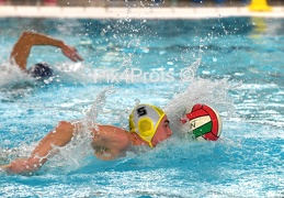 WATERPOLO DE VENNEN-WIEKENSLAG